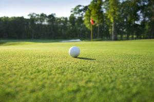 public golf courses