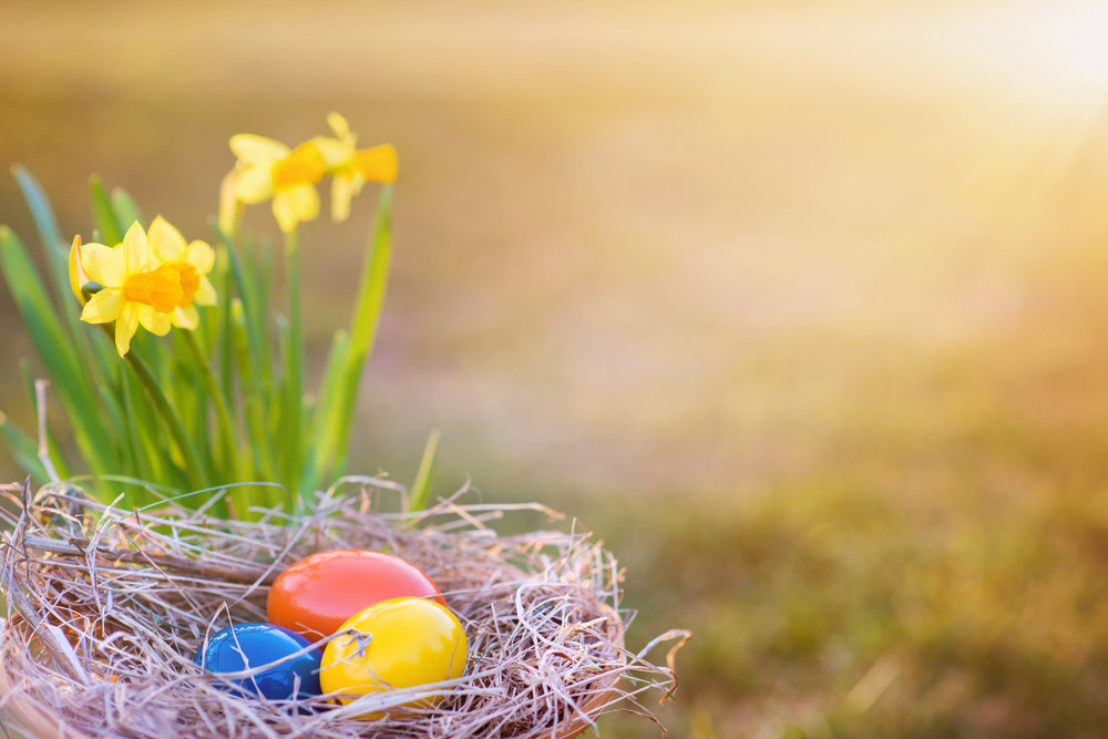 4 Exciting Things to Make This Easter Memorable